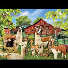 Six Llamas -