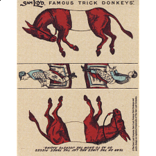Famous Trick Donkeys - Color - English - Red -