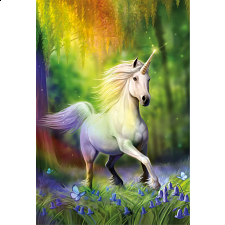Chasing the Rainbow -