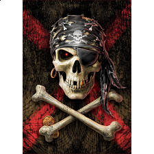Pirate Skull -