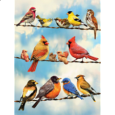 Birds On A Wire - Large Piece -