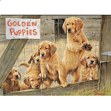 Golden Puppies : Large Pieces -