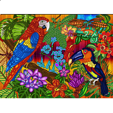 Tropics -