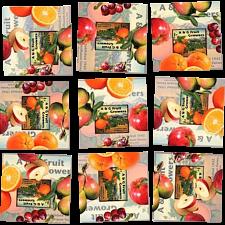 Scramble Squares - Fruit -