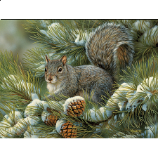 Gray Squirrel - Large Piece -