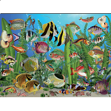 Aquarium -  Large Piece -