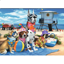 No Dogs on the Beach -