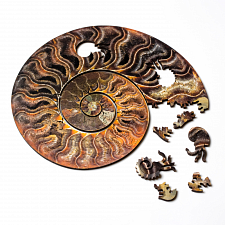 Ammonite Wooden Jigsaw Puzzle -