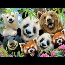 Selfies: Bear Essentials -