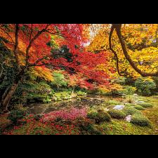 Autumn Park -