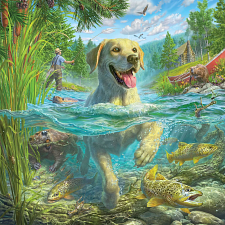 Mark Fredrickson: Yellow Lab Swimming -