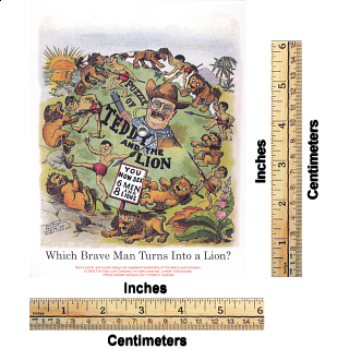 Puzzle of Teddy and the Lion