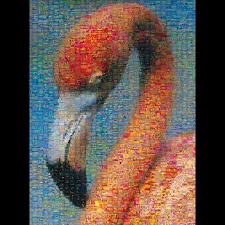 Photomosaic: Flamingo
