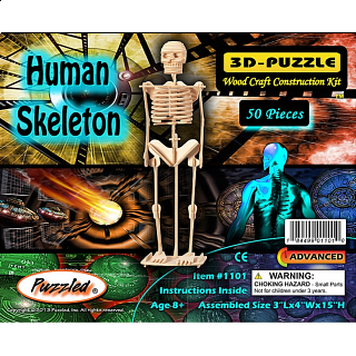 Human Skeleton - 3D Wooden Puzzle
