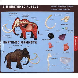 Anatomic Mammoth Puzzle