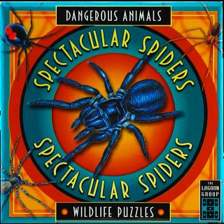 Spectacular Spiders - Dangerous Animals - Wildlife Puzzles