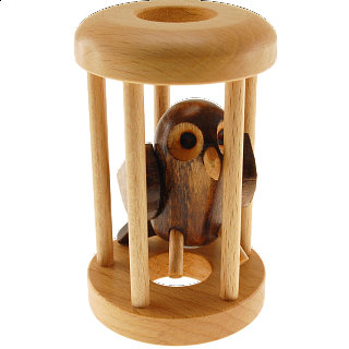 Owl in a Cage