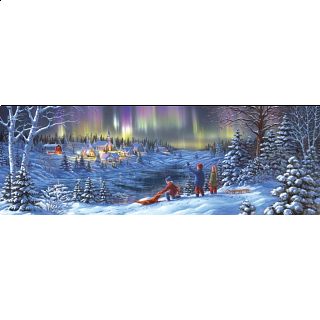 Artist Panoramic - Wonder