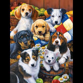 Furry Friends - Country Bumpkins