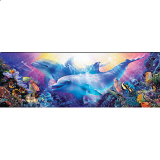 Artist Panoramic - Believe The Dream