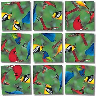 Scramble Squares - North American Birds