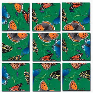 Puzzle Solution for Scramble Squares - Butterflies