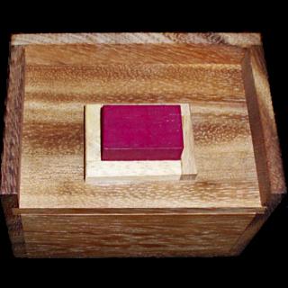 Melting Blocks Puzzle (Redstone Box)