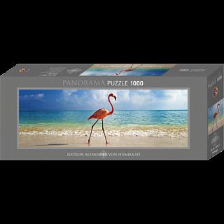 AVH Panorama: Flamingo