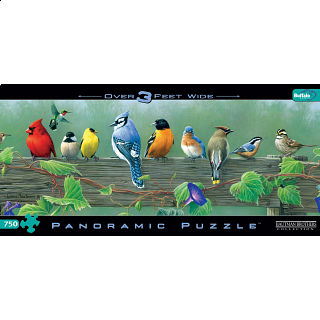 Panoramic: Songbirds