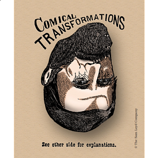 Comical Transformations