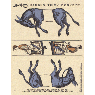 Famous Trick Donkeys - Color - Post Card - English - Blue