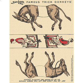Famous Trick Donkeys - Color - Post Card - English