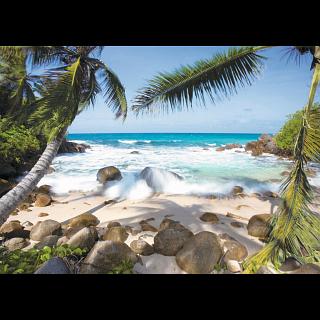 Seaside Beauty