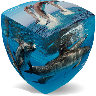 V-CUBE 2 Pillow (2x2x2): Dolphin Cube