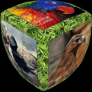 V-CUBE 2 Pillow (2x2x2): Unique Birds