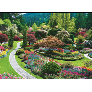 The Butchart Gardens - Sunken Garden