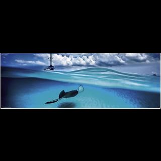 AVH Panorama: Stingray