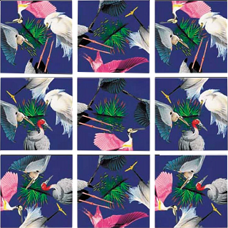 Puzzle Solution for Scramble Squares - Wetland Birds