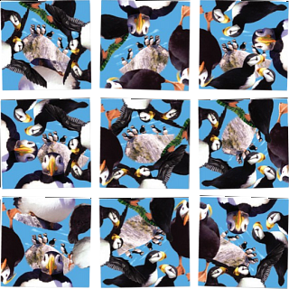 Puzzle Solution for Scramble Squares - Puffins