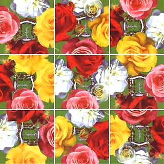 Puzzle Solution for Scramble Squares - Roses
