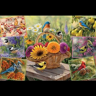 Rosemary's Birds