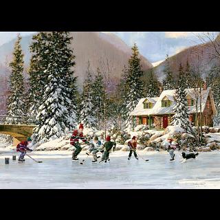 Hockey Pond - Tray Puzzle