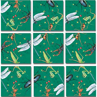 Scramble Squares - Insects