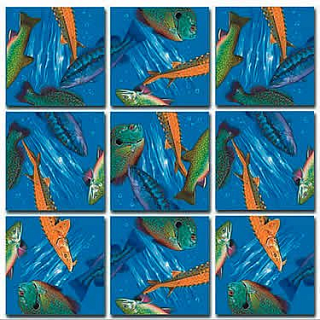 Puzzle Solution for Scramble Squares - Freshwater Fish