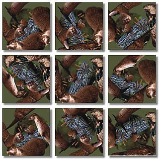 Puzzle Solution for Scramble Squares - River Otters