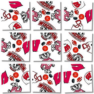 Puzzle Solution for Scramble Squares - University of wisconsin