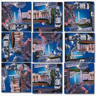 Puzzle Solution for Scramble Squares - Washington D.C.
