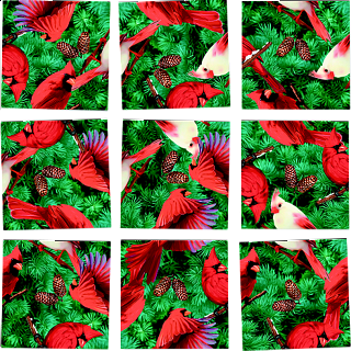 Scramble Squares - Cardinals