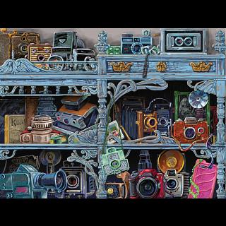 Camera Evolution - Large Piece Format