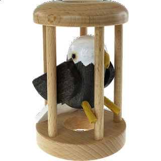 American Eagle in a Cage